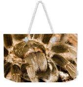 A Tarantula Living In Mangrove Forest Weekender Tote Bag