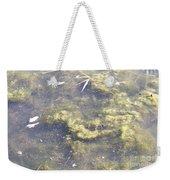 Algae Bloom In A Pond Weekender Tote Bag