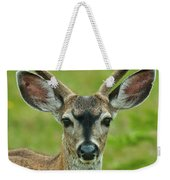 All Ears Weekender Tote Bag
