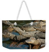 Alligator Pool Party Weekender Tote Bag