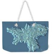 Amoeba Proteus Weekender Tote Bag