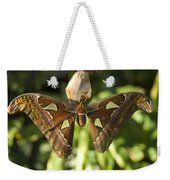 An Atlas Moth Atlas Attacus At The St Weekender Tote Bag