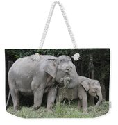 Asian Elephant Elephas Maximus Mother Weekender Tote Bag