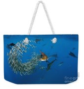 Atlantic Sailfish Istiophorus Albicans Weekender Tote Bag