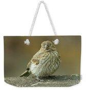 Baby House Finch Weekender Tote Bag