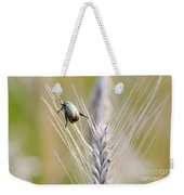 Beetle On The Wheat Weekender Tote Bag