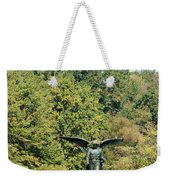 Birdbath Of Central Park Weekender Tote Bag