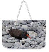 Black Oystercatcher Haematopus Bachmani Weekender Tote Bag