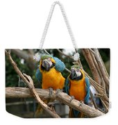 Blue And Gold Macaw Weekender Tote Bag