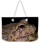 Bobs Robber Frog Weekender Tote Bag