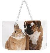 Boxer Puppy And Netherland-cross Rabbit Weekender Tote Bag