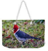Brazillian Red-capped Cardinal Weekender Tote Bag