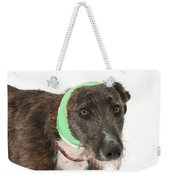 Brindle Lurcher Wearing A Bandage Weekender Tote Bag