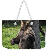 Brown Bear Itch Weekender Tote Bag