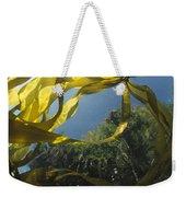 Bull Kelp Underwater Clayoquot Sound Weekender Tote Bag