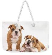 Bulldog Puppies Weekender Tote Bag