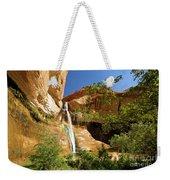 Calf Creek Falls Canyon Weekender Tote Bag