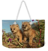 Canadian Lynx Kittens, Alaska Weekender Tote Bag