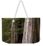 Cedar Trees, Whistler, British Columbia Weekender Tote Bag