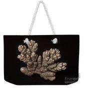 Chromium Weekender Tote Bag