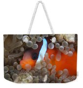Cinnamon Clownfish In Its Host Anemone Weekender Tote Bag