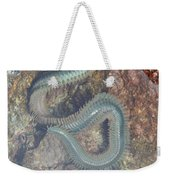 Clam Worm Weekender Tote Bag