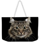 Close Up Of Cats Face Weekender Tote Bag