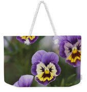 Close View Of Pansy Blossoms Weekender Tote Bag