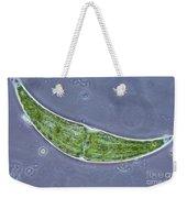 Closterium Sp. Algae Lm Weekender Tote Bag by M. I. Walker