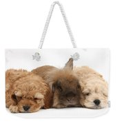 Cockerpoo Puppies And Rabbit Weekender Tote Bag