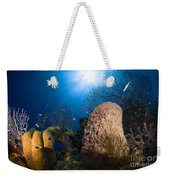 Coral And Sponge Reef, Belize Weekender Tote Bag