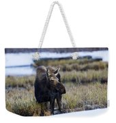 Cow Moose Weekender Tote Bag