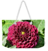 Dahlia Named Pride Of Place Weekender Tote Bag