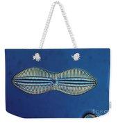 Diatom - Diploneis Crabro Weekender Tote Bag by Eric V. Grave