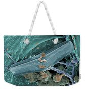 Diatom With Thermophilic Bacteria Weekender Tote Bag
