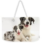 Dog And Puppy Weekender Tote Bag