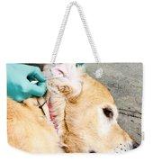 Dog Grooming Weekender Tote Bag by Photo Researchers, Inc.