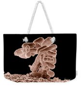 E. Coli Bacteria Weekender Tote Bag by Science Source