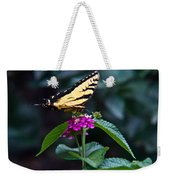 Eastern Tiger Swallowtail 3 Weekender Tote Bag