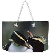 Erect-crested Penguin Eudyptes Sciateri Weekender Tote Bag