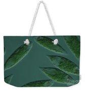 Euglena Viridis Weekender Tote Bag
