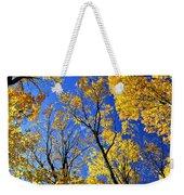 Fall Maple Trees Weekender Tote Bag