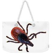 Female Blacklegged Tick Weekender Tote Bag