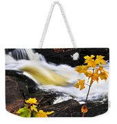 Forest River In The Fall Weekender Tote Bag by Elena Elisseeva