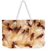 Formosan Termites Weekender Tote Bag by Science Source