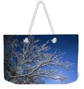 Fresh Snowfall Blankets Tree Branches Weekender Tote Bag