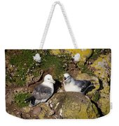 Fulmar Pair Bonding Weekender Tote Bag