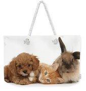 Ginger Kitten With Cavapoo Pup Weekender Tote Bag