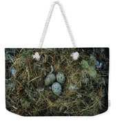 Glaucous-winged Gull Nest With Three Weekender Tote Bag