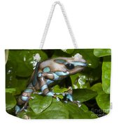Green And Black Poison Frog Weekender Tote Bag